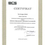 Obsługa systemów ip firmy BCS