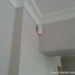 Detektor Pir