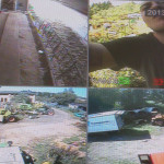 Kamery dla rolników