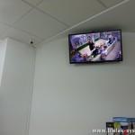 Podgląd CCTV